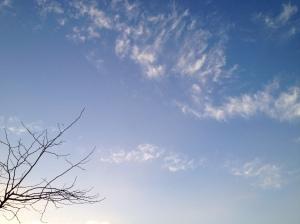 A spring sky.